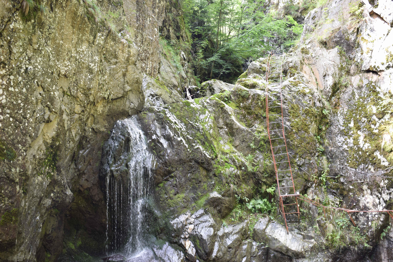 Turist în România: Valea lui Stan