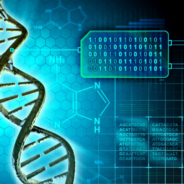 BIOLOGY CORNER – Bioinformatica – știința viitorului?