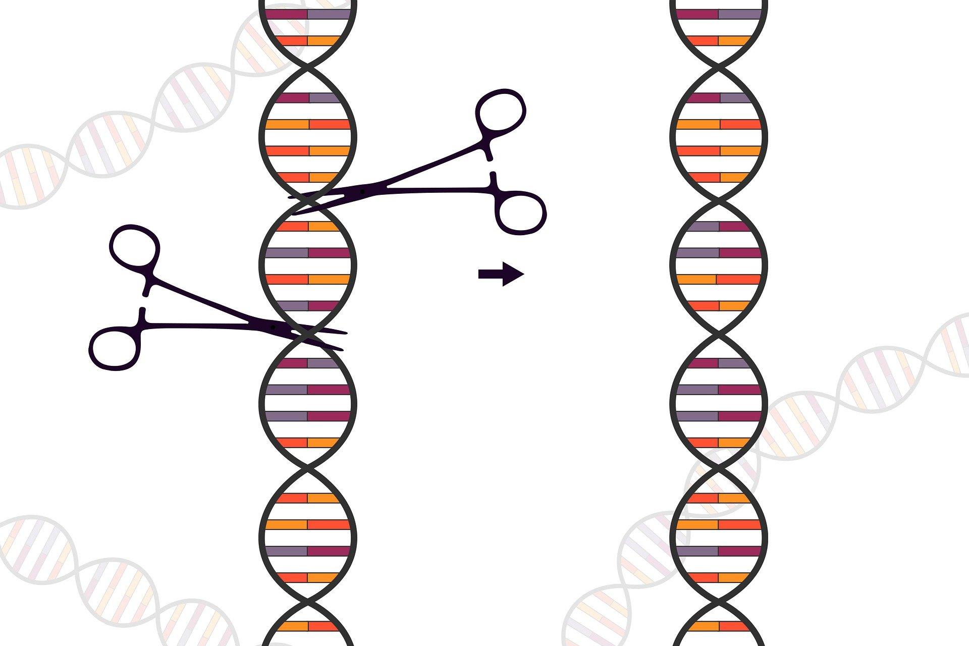 Contopirea cu tehnologia, Neuralink și editarea genetică